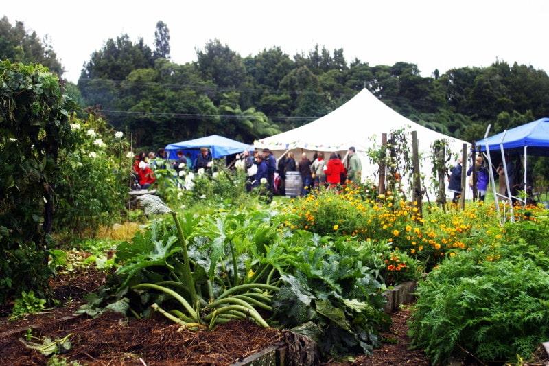 Autumn festival for Garden design fest 2014